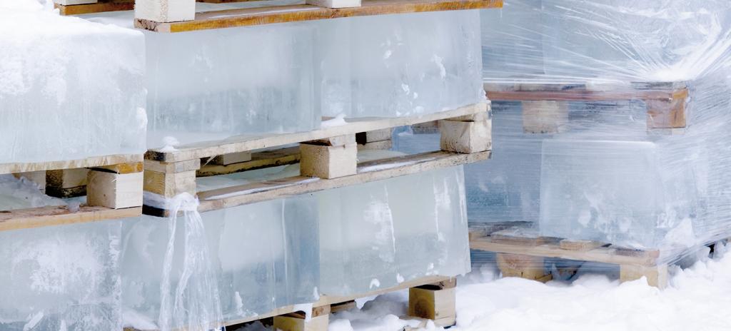 Il est nécessaire d'assécher la formation du givre et de la glace dans les chambres froids négatives. Photo Disseca