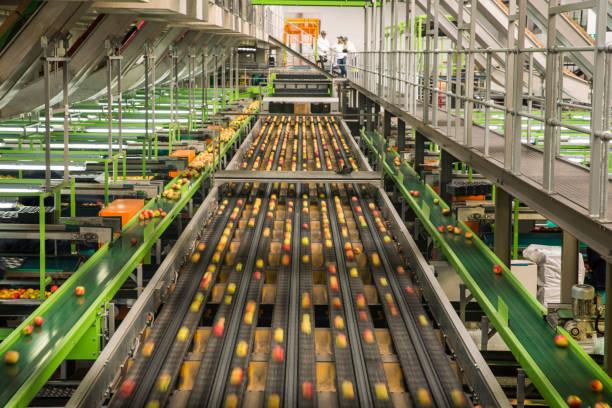 Industrie agroalimentaire : producteurs de pommes